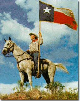 Texas flag picture
